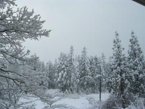 妙高山は厚い雪雲の中です。