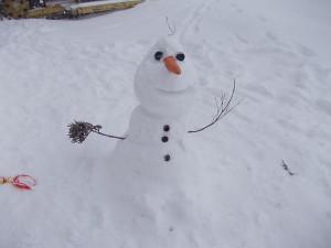 雪の「オラフ」です。
